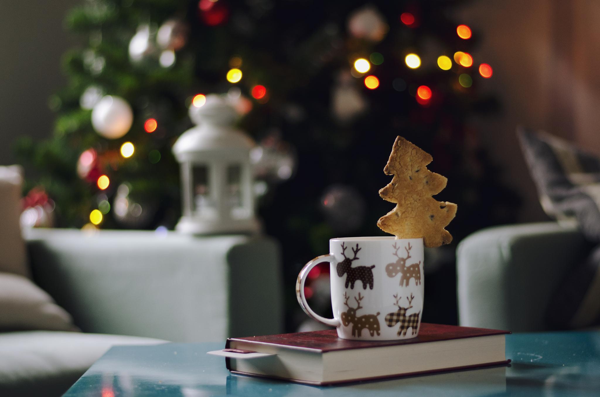 Resultado de imagem para natal com livros