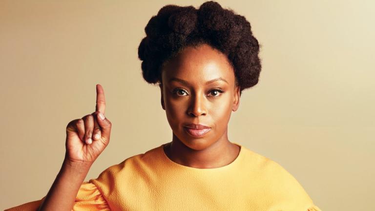 Um desabrochar em 'Hibisco roxo', de Chimamanda Ngozi Adichie